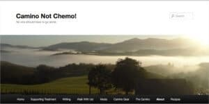 The original Camino Not Chemo blog